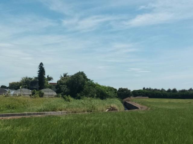 新屋大坡農保田,桃園市新屋區大坡段